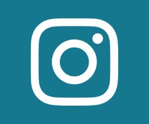 Wie bekommt man den blauen Haken bei Instagram?