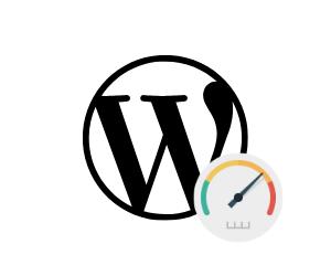 WordPress Performance verbessern