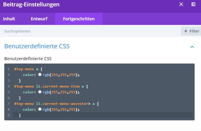 Divi WordPress Custom CSS einbinden