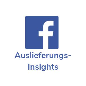 Facebook Werbung Insights