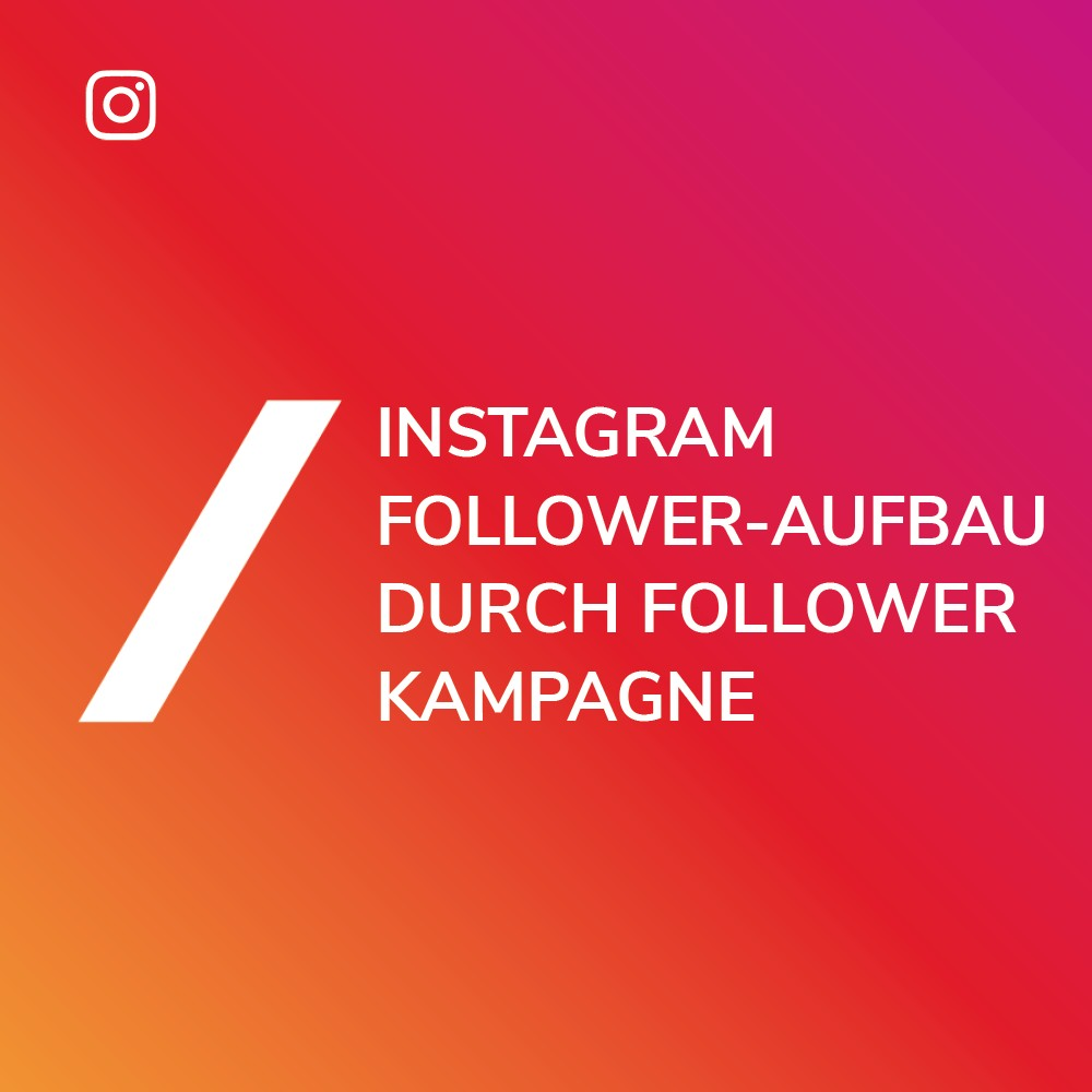 Instagram Follower Anzeigen