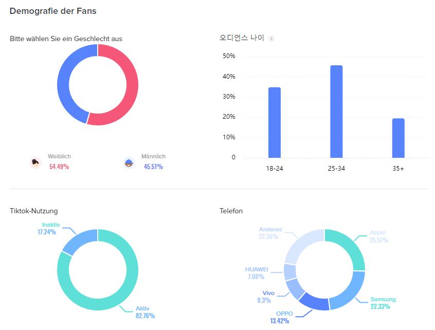 TIkTok Influencer Profil 2